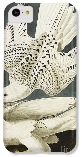 Iceland Or Jer Falcon IPhone 5c Case by John James Audubon