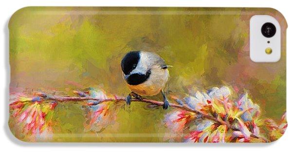 Impressionist Chickadee IPhone 5c Case by Jai Johnson