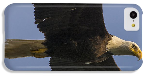 IPhone 5c Case featuring the photograph In Flight by Gary Lengyel