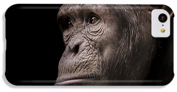 Chimpanzee iPhone 5c Case - Indignant by Paul Neville