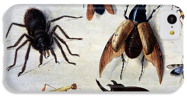 Insects, 1660 IPhone 5c Case