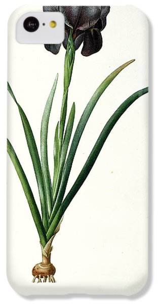 Iris Luxiana IPhone 5c Case by Pierre Joseph  Redoute