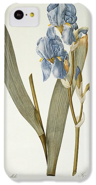Iris Pallida IPhone 5c Case
