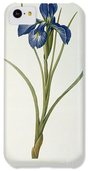 Iris Xyphioides IPhone 5c Case by Pierre Joseph Redoute