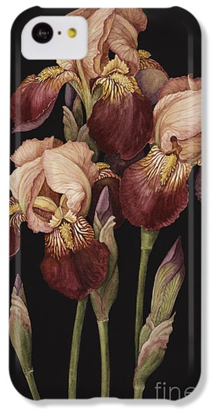 Irises IPhone 5c Case by Jenny Barron