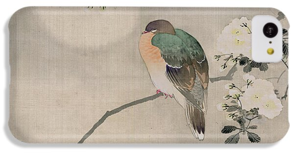 Japanese Silk Painting Of A Wood Pigeon IPhone 5c Case by Japanese School
