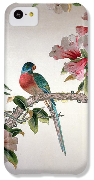 Jay On A Flowering Branch IPhone 5c Case by Chinese School