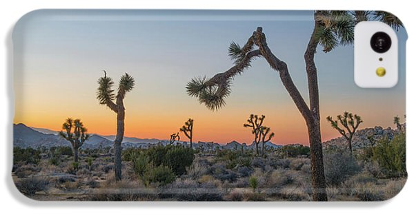 Joshua Sunset IPhone 5c Case by Joseph Smith