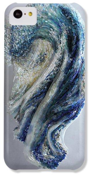 Turkey iPhone 5c Case - Kaynak by Mia Tavonatti