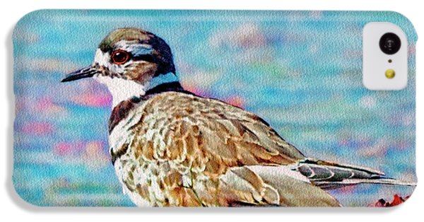 Killdeer  IPhone 5c Case by Ken Everett