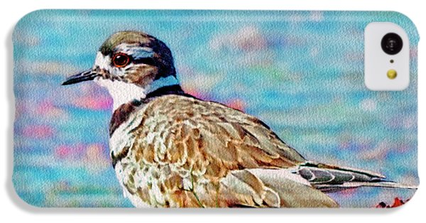 Killdeer iPhone 5c Case - Killdeer  by Ken Everett