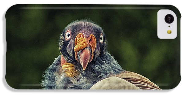 King Vulture IPhone 5c Case