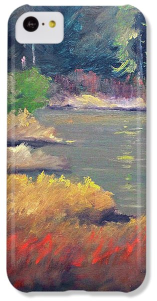 IPhone 5c Case featuring the painting Lagoon by Nancy Merkle