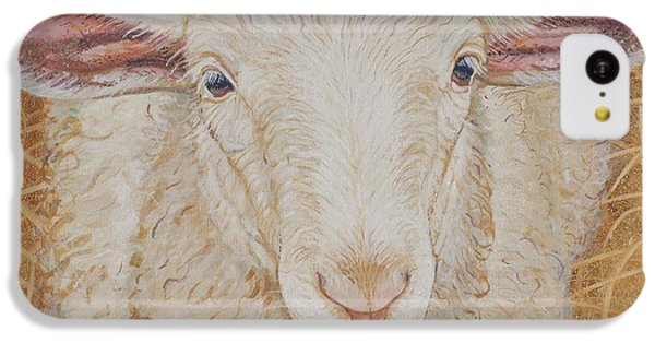 Sheep iPhone 5c Case - Lamb Of God by Christine Belt