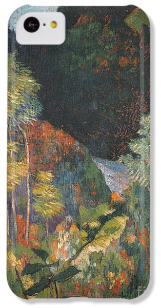 Landscape IPhone 5c Case