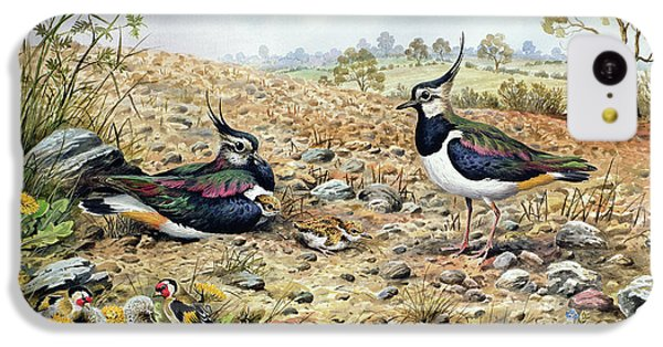 Lapwing Family With Goldfinches IPhone 5c Case by Carl Donner