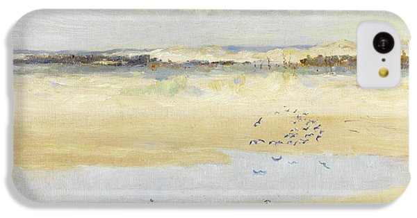 Lapwings By The Sea IPhone 5c Case