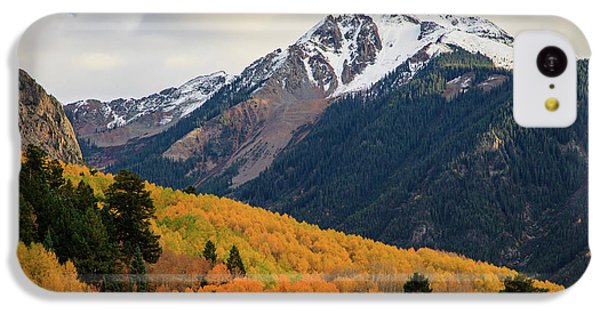 Last Light Of Autumn IPhone 5c Case by David Chandler