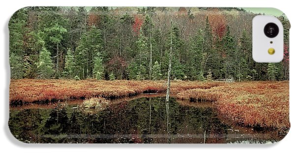 IPhone 5c Case featuring the photograph Last Of Autumn On Fly Pond by David Patterson