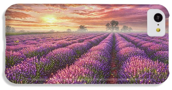 Mouse iPhone 5c Case - Lavender Field by Phil Jaeger