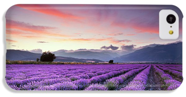 Rural Scenes iPhone 5c Case - Lavender Season by Evgeni Dinev