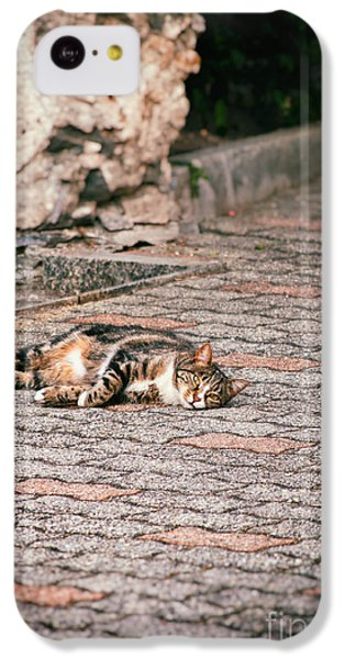IPhone 5c Case featuring the photograph Lazy Cat    by Silvia Ganora