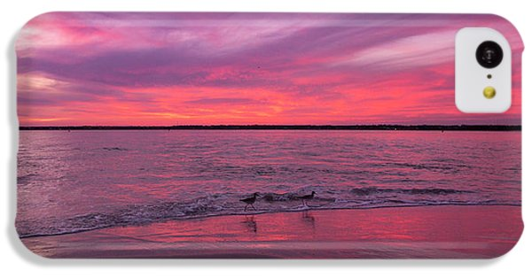 Sandpiper iPhone 5c Case - Leave Us To Dream 2 by Betsy Knapp