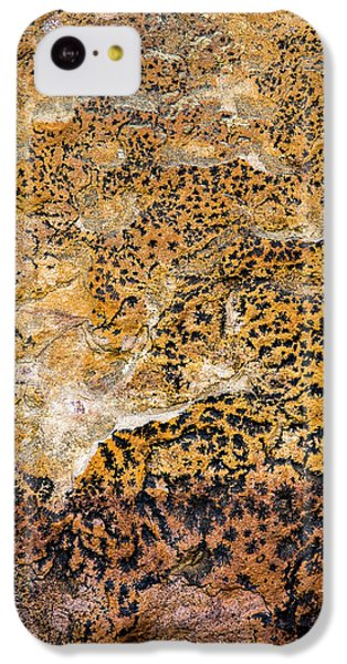 IPhone 5c Case featuring the photograph Lichen Abstract, Bhimbetka, 2016 by Hitendra SINKAR
