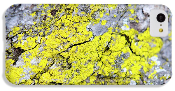 IPhone 5c Case featuring the photograph Lichen Pattern by Christina Rollo