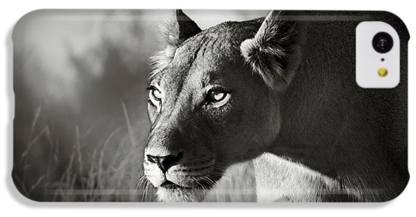 Portraits iPhone 5c Case - Lioness Stalking by Johan Swanepoel