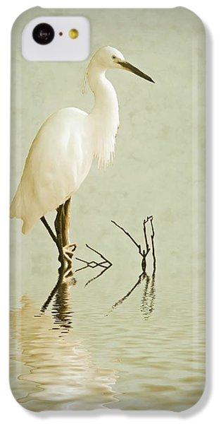 Little Egret IPhone 5c Case by Sharon Lisa Clarke