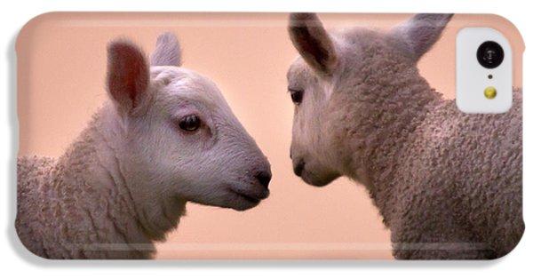 Sheep iPhone 5c Case - Little Gossips by Angel Ciesniarska