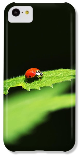Little Red Ladybug On Green Leaf IPhone 5c Case