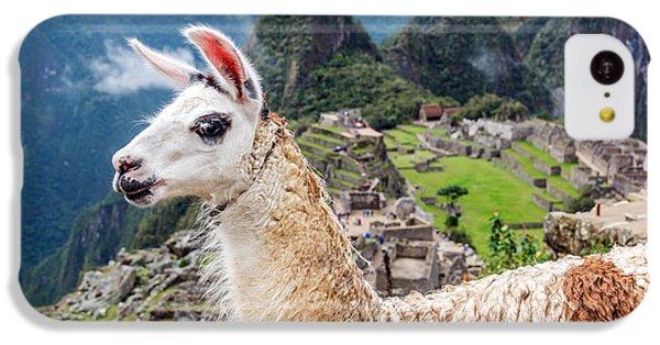 Llama At Machu Picchu IPhone 5c Case