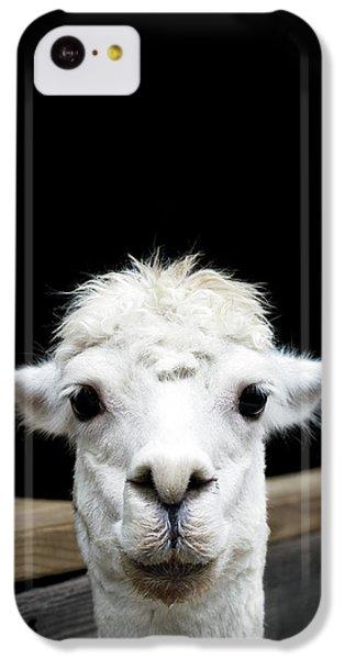 Llama IPhone 5c Case by Lauren Mancke