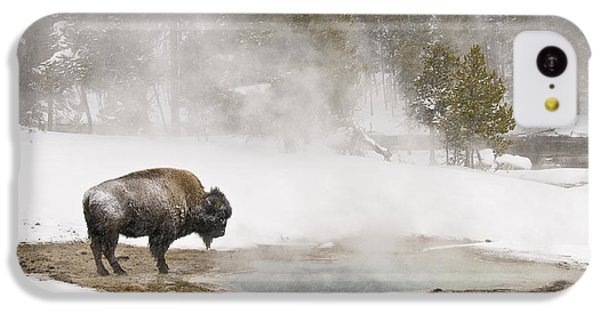 IPhone 5c Case featuring the photograph Bison Keeping Warm by Gary Lengyel