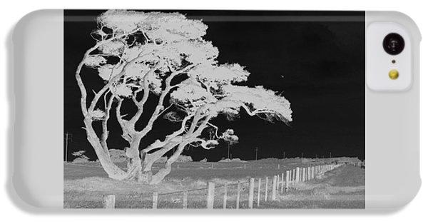 Lone Tree, West Coast IPhone 5c Case