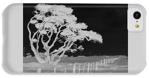 IPhone 5c Case featuring the photograph Lone Tree, West Coast by Nareeta Martin