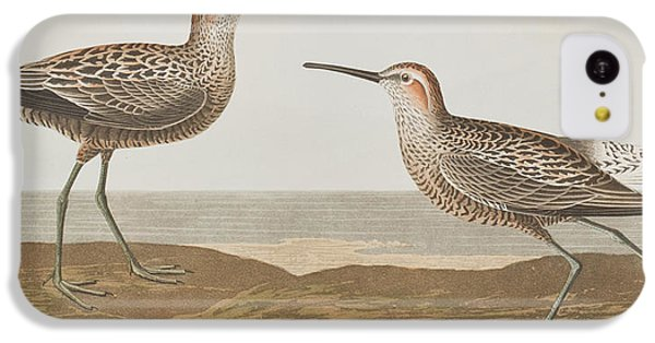 Long-legged Sandpiper IPhone 5c Case by John James Audubon