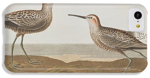 Long-legged Sandpiper IPhone 5c Case
