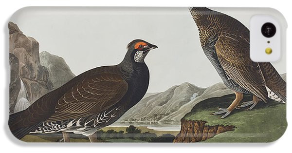 Long-tailed Or Dusky Grous IPhone 5c Case by John James Audubon