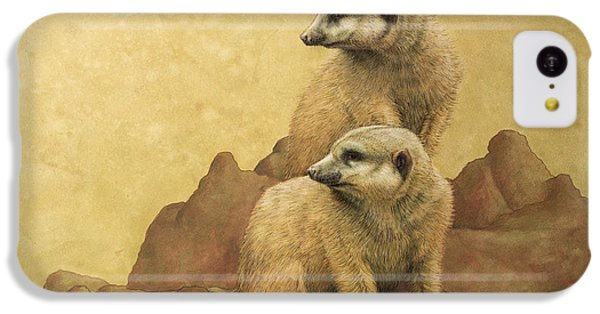 Lookouts IPhone 5c Case by James W Johnson