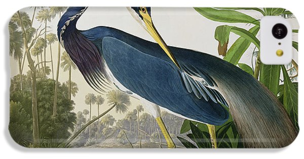 Louisiana Heron IPhone 5c Case by John James Audubon