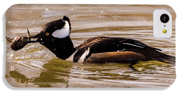 IPhone 5c Case featuring the photograph Lunchtime For The Hooded Merganser by Randy Scherkenbach