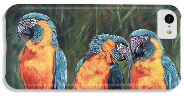 Macaws IPhone 5c Case
