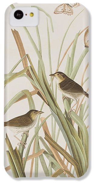 Macgillivray's Finch  IPhone 5c Case by John James Audubon