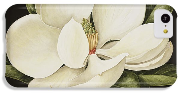 Magnolia Grandiflora IPhone 5c Case by Jenny Barron