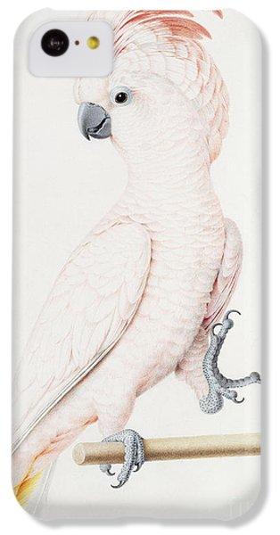 Major Mitchell's Cockatoo IPhone 5c Case by Nicolas Robert