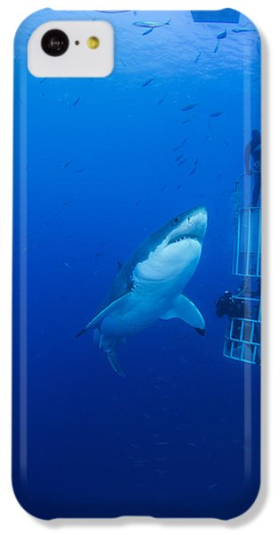 Sharks iPhone 5c Case - Male Great White With Cage, Guadalupe by Todd Winner