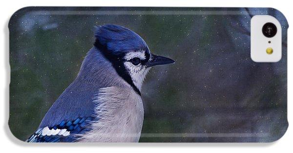 Bluejay iPhone 5c Case - Me Minus You - Blue by Evelina Kremsdorf